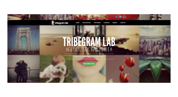 Site Tribegram_Lab