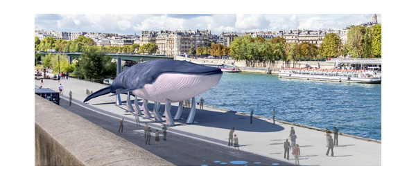 La Baleine bleue pour culture RP
