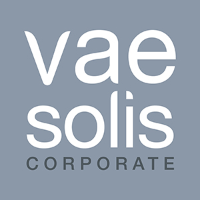 logo Vae Solis Corporate